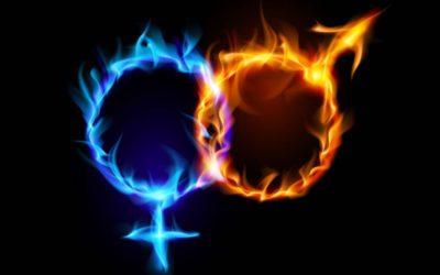 Seksuel polaritet og fysisk tiltrækning