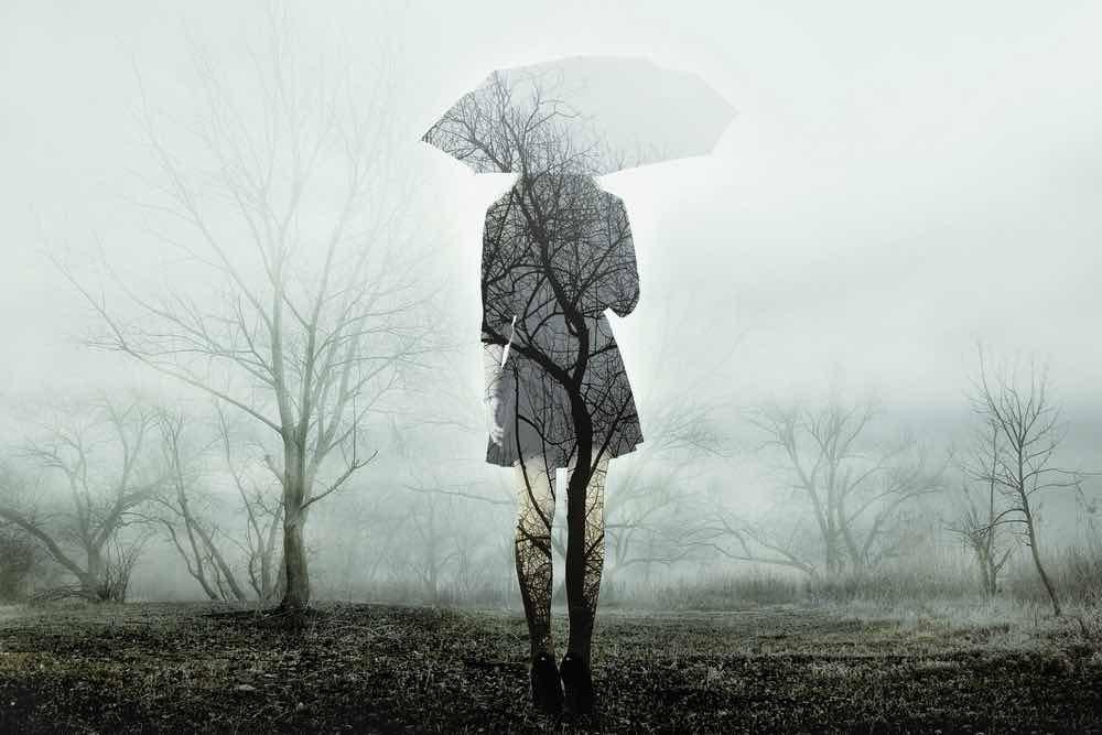 Sorgens 4 opgaver – Psykoterapeutens råd til at komme videre med dit liv